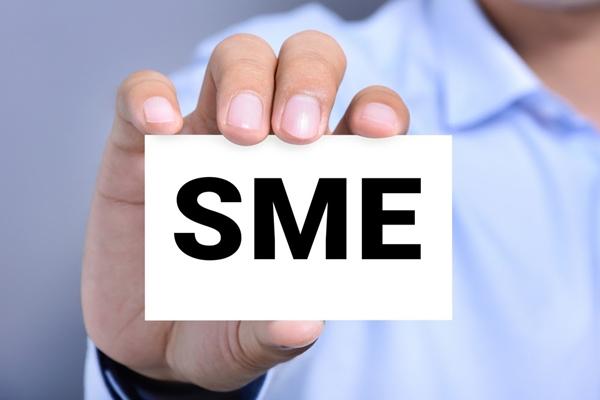 SME là gì? Tìm hiểu về doanh nghiệp quy mô vừa và nhỏ - Ảnh 2